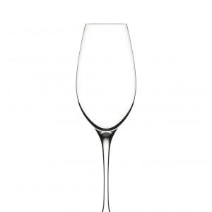Calice Invino Champagne