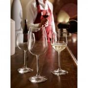 collezione chardonnay