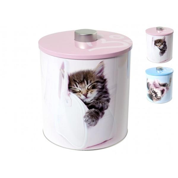 Biscottiera Cats