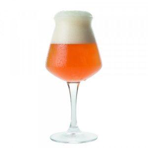 Bicchiere Birra Teku 42 cl per degustazione Rastal GMA serigrafia personalizzazione